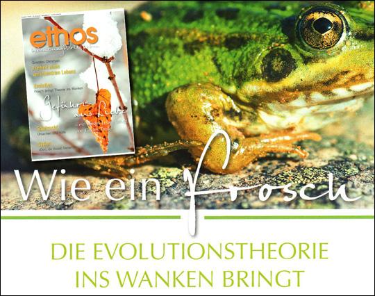 Berühmt Frosch Dissektion Arbeitsblatt Antworten Fotos - Mathe ...